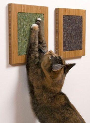 Os pequenos quadros pendurados na parede com material próprio para arranhar podem evitar que os bichanos afiem suas garras em sofás ou outros móveis. Os produtos da Square Cat Habitat (www.squarecathabitat.com) podem ser fixados por ventosas