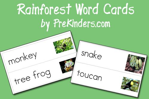 I have added new Rainforest picture-word cards to the Picture Word Cards page. I was not able to find some rainforest animals available in royalty free photos, so I apologize for any animals that may be missing from the set. I hope to make either an Easter set or Spring set soon. To download the …