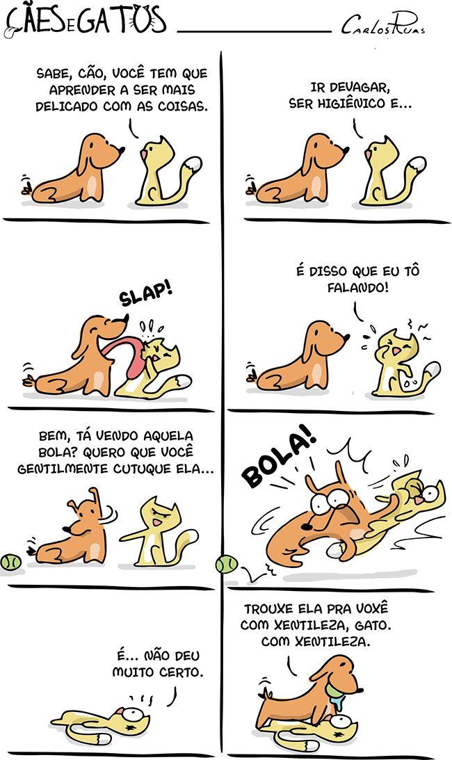 Cães e Gatos em – Aprendendo a ter modos Esse lembra o meu Cachorro, tb um bassê, Bingo ao ver uma bolinha.... kkkk