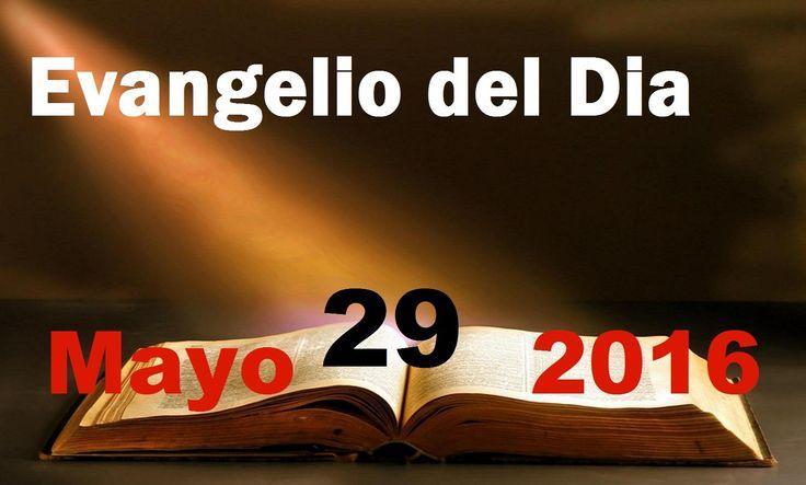 Evangelio del Dia- Domingo Mayo 29, 2016