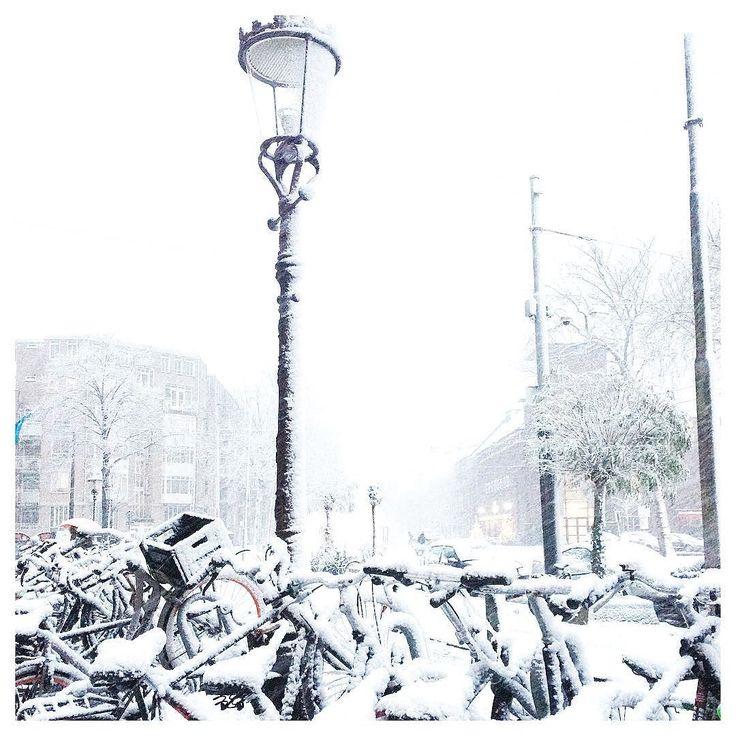 Hi Amsterdam!