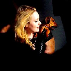 Pin for Later: 25 Adele Facts We Bet You Don't Know She has a dachshund named Louis Armstrong. Louis has even posed with his famous mom in Vogue and Nylon.