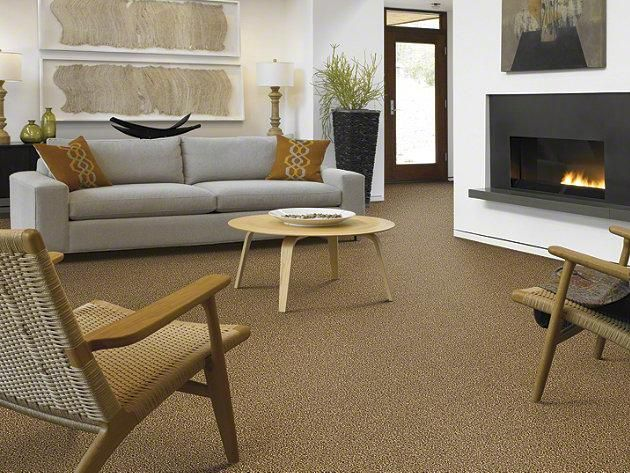 """Carpeting in style """"Your Invited Texture"""" color Lodge by Shaw Floors"""