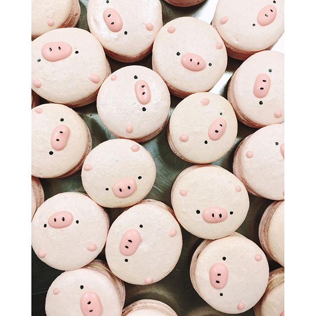 Oink oink these are so cute #macarons