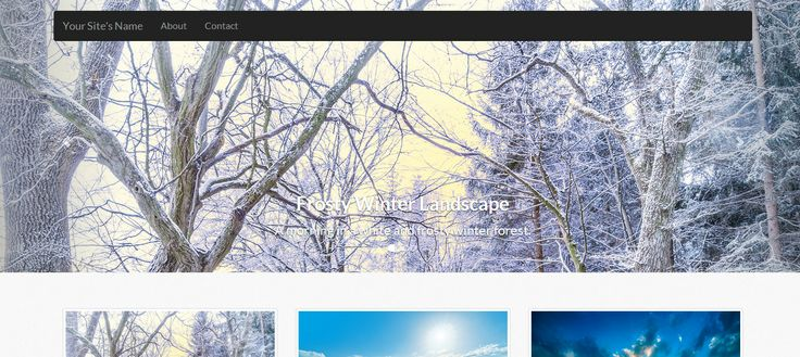 A photo gallery script made with PHP. Live demo @ http://vienhoang.com/demo/20131203PHPPhotoGallery/  Made with: PHP OOP, MySQL, Bootstrap v3, HTML5, CSS3, LESS, Git and jQuery.