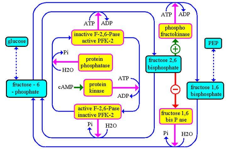 download Fundamentele Modelării și Identificării Sistemelor