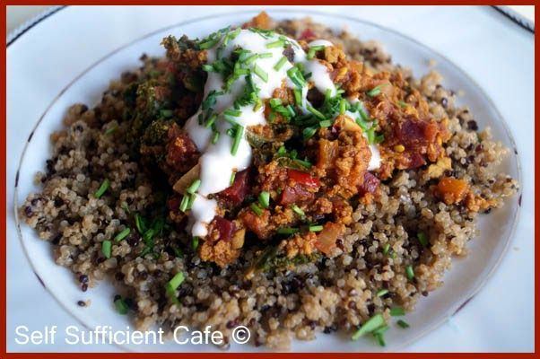 Self Sufficient Cafe: Winter Wellness Part 3  Chilli Goodness