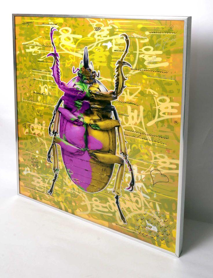 Pop'n bug original artwork for sale www.dominicvonbern.com
