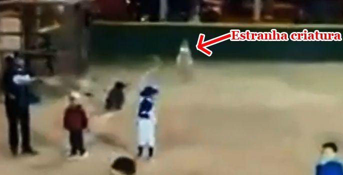"""Criatura """"invisível"""" é flagrada em campo de beisebol no México"""