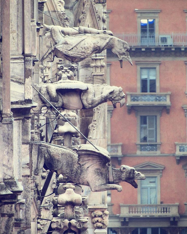 Gargoyles of Milan Cathedral. Gargoyles are in form of chimeras and animals. It was believed that they are to frighten off  and protect the church from evil and harmful spirits. #milano #duomomilano #duomodimilano #milanocity #milanodavedere #vivomilano #visitmilano #loves_milano #loves_italia #lombardia_super_pics #milano_forever #milanoeventi #eventiamilano #дуомо #дуомодимилано #милан #италия #архитектура #архитектурамира #maggiorerent #milanocity #milanosegreta by nigara129