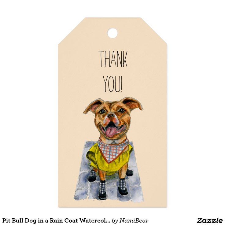 Pit Bull Dog in a Rain Coat Watercolor Painting Customizable Gift Tag at Zazzle