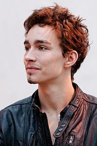 Robert Sheehan - My friend actually met him once in Ireland. Everyone was making a fuss over him, so just to be a jerk she told him she was American and had never heard of him. He told her he'd never heard of her either. She was quite impressed by that. 100% legit story since I'd never heard of him before she told me.