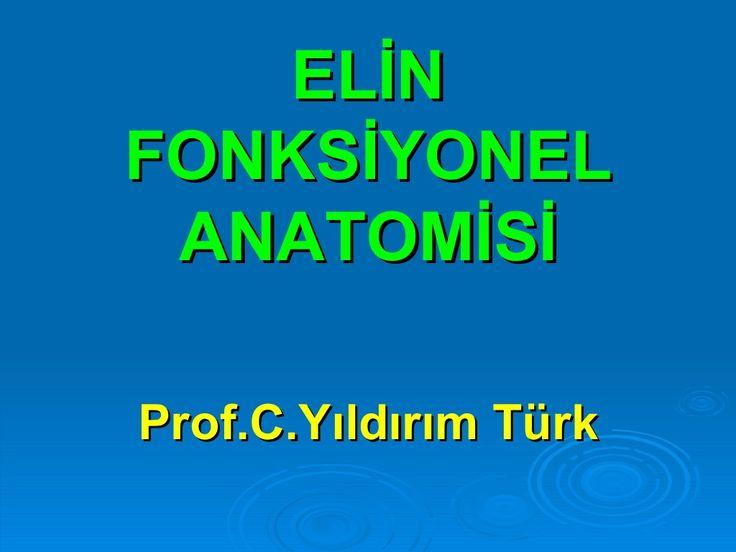 ELİNFONKSİYONEL ANATOMİSİProf.C.Yıldırım Türk