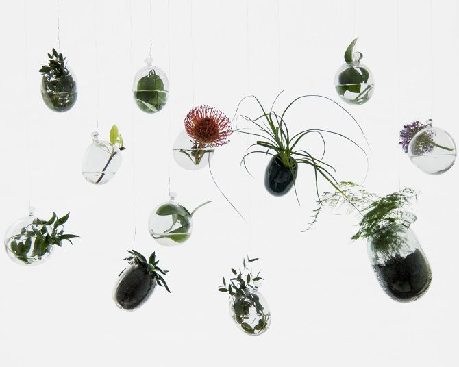 Hanging Garden  Glass pots for plants to take root and grow.   2016 Design Milla Vaahtera Glassblowing : Paula Paakkonen, Otto Koivuranta & Sara Hulkkonen  Made to order  http://cargocollective.com/millavaahtera
