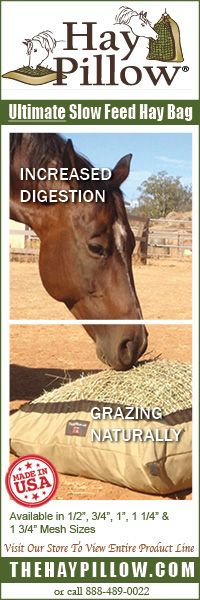 Interview with Vet and Barefoot Advocate, Dr. Tomas Teskey | The Naturally Healthy Horse Blog
