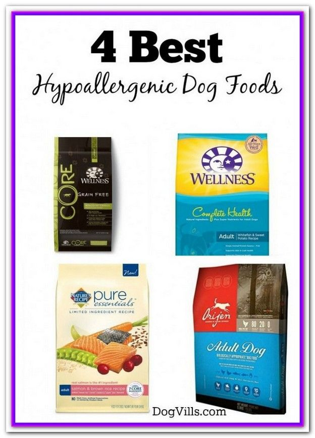 The Best Food For Dogs With Skin Allergies Hypoallergenic Dog