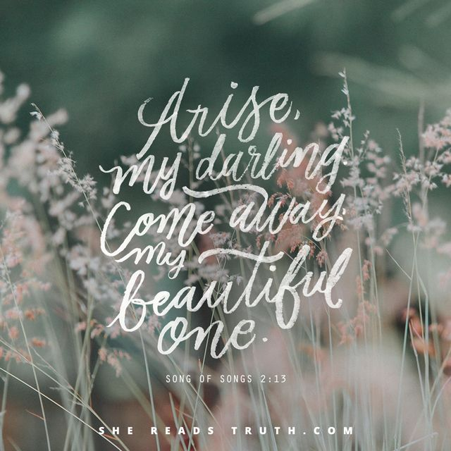 Best 25+ Song Of Songs Ideas On Pinterest