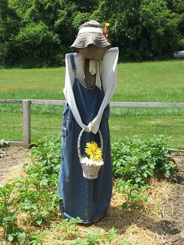 Scary but somehow beautiful ... If you love gardening please visit us on Facebook: https://www.facebook.com/GreenDreamsLandscape