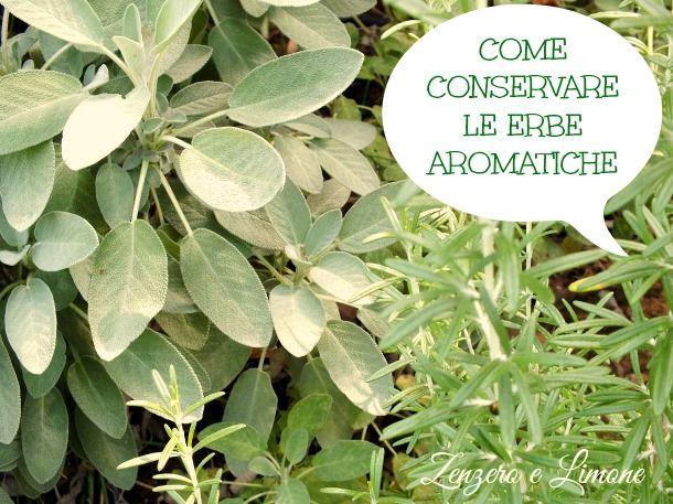 alcune semplici regole che ci spiegano come conservare le erbe aromatiche per poterle utilizzare anche fuori stagione e non rinunciare mai al loro aroma