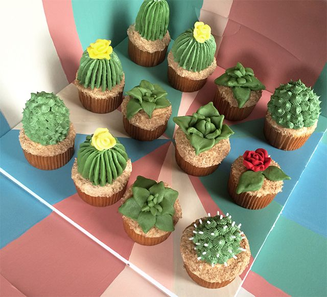 These succulent cupcakes are so beautiful and sure to impress your friends and family! You'll also love the Flower Pot Cakes so be sure to give them a try.