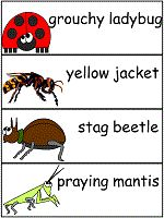 The Grouchy Lady Bug story retell