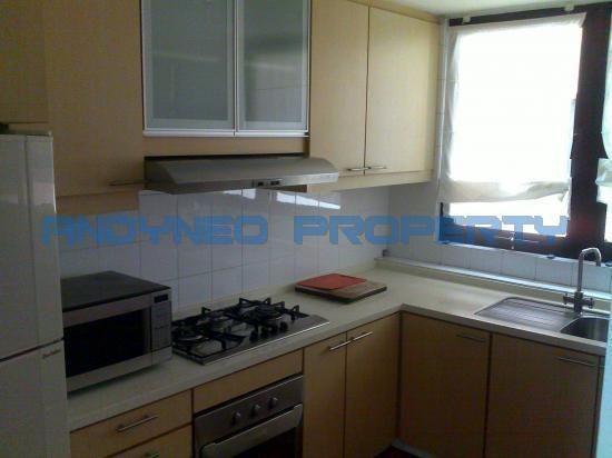 Condominium For Rent - Yong An Park, 325 River Valley Road, 238357 Singapore, CONDO, 1BR, 1023sqft, #2543926