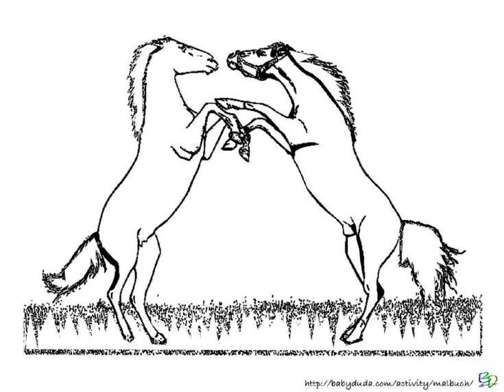 die besten 25 ausmalbilder pferde ideen auf pinterest