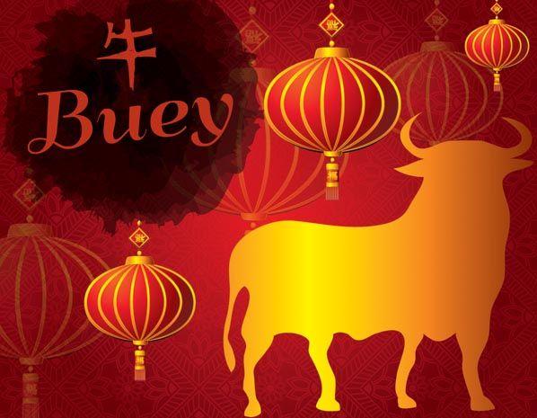 Predicciones del horóscopo chino para 2014: Buey (© Tobias Helbig/Getty Images)