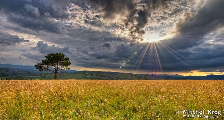 Clarens landskap, Vrystaat