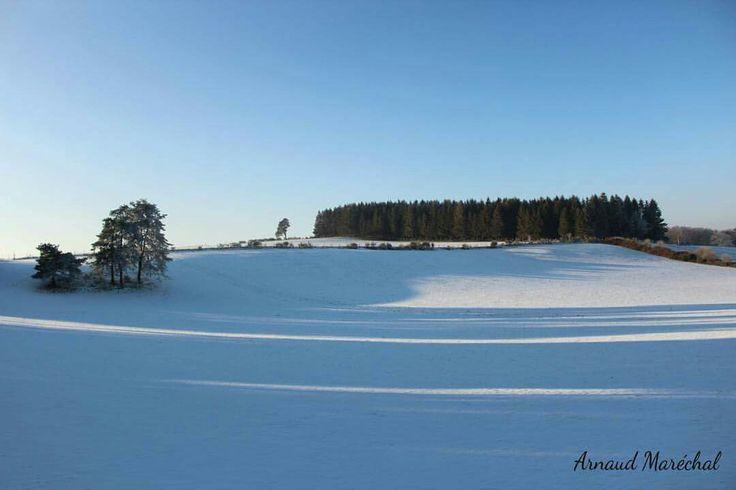 La lumière se distend.  #lumiere #light #arbre #tree #neige #snow #champs #field #correze #limousin #plateaudemillevaches  #nouvelleaquitaine #canon