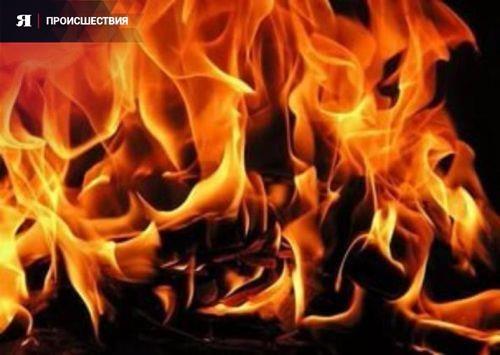 При пожаре в поселке Некрасовское погиб мужчина  http://yarcube.ru/news/proisshestvija/73418.php  Пожар случился 9 октября 2016 года в одном из домов на улице Советской в поселке Некрасовское Ярославской области. Как сообщили в пресс-службе СУ СК РФ по ЯО, при пожаре погиб 42-летний мужчина. Его тело было обнаружено на месте происшествия после ликвидации возгорания.