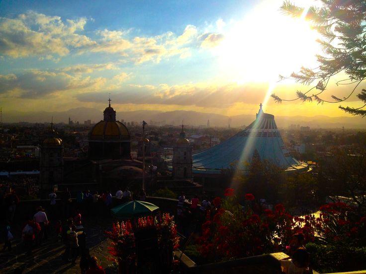 La Basilica de Guadalupe Derechos Reservados