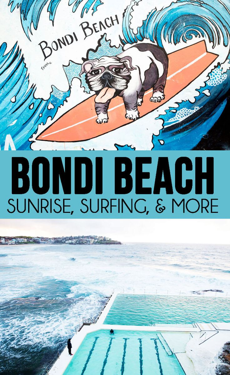Spending a day at Bondi Beach surfing sunrises and so much more