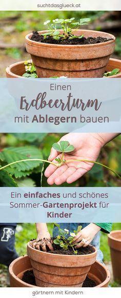 Gartenprojekt für Kinder: Einen Erdbeerturm bauen (mit eigenen Ablegern – Christine Ruhland
