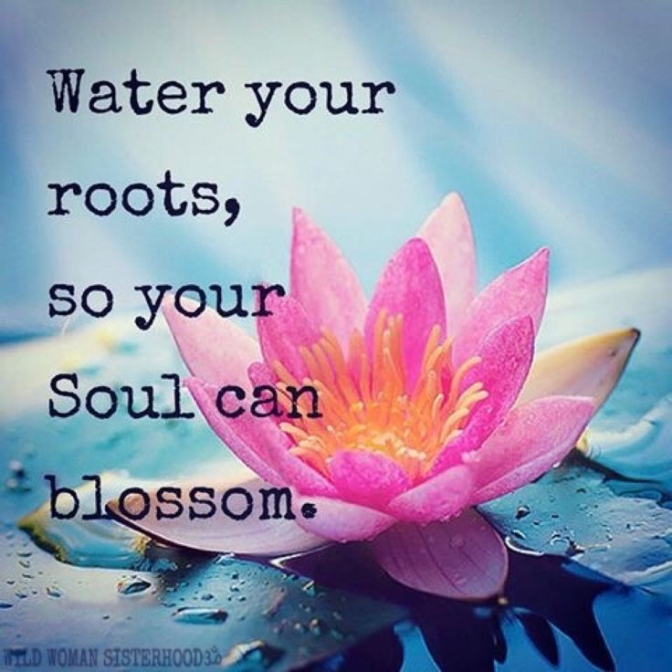 ~ Water your roots, so your soul can blossom.