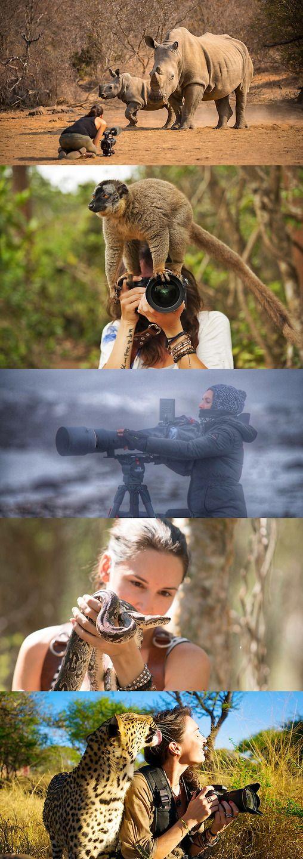 About wildlife photographer & cinematographer Shannon Wild.