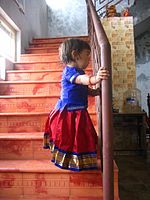 culture- Pattu pavadai or langa davani is a traditional dress that's worn by teenage and young girls in south india and Rajasthan.