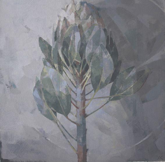 """Jeannie Kinsler, """"protea"""", oil on canvas"""