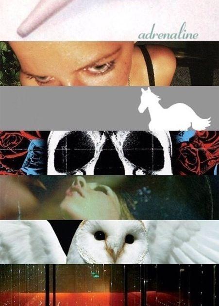 Adrenaline, Around the Fur, White Pony, Deftones, Saturday Night Wrist, Diamond Eyes and Koi No Yokan <3