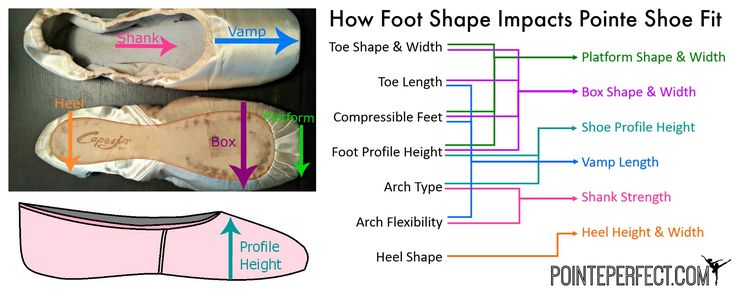 Learn Your Foot Type - Pointe Fitting - PointePerfect.com Pointe fitting is serious business. Believe it or not, pointe shoe fit can have a true impact on the future of a pointe student. Are you in your best shoe?