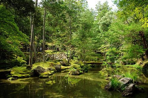 Kokedera Moss Temple Gardens, Kyoto
