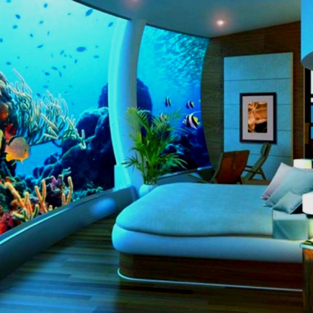 Amazing bed room!