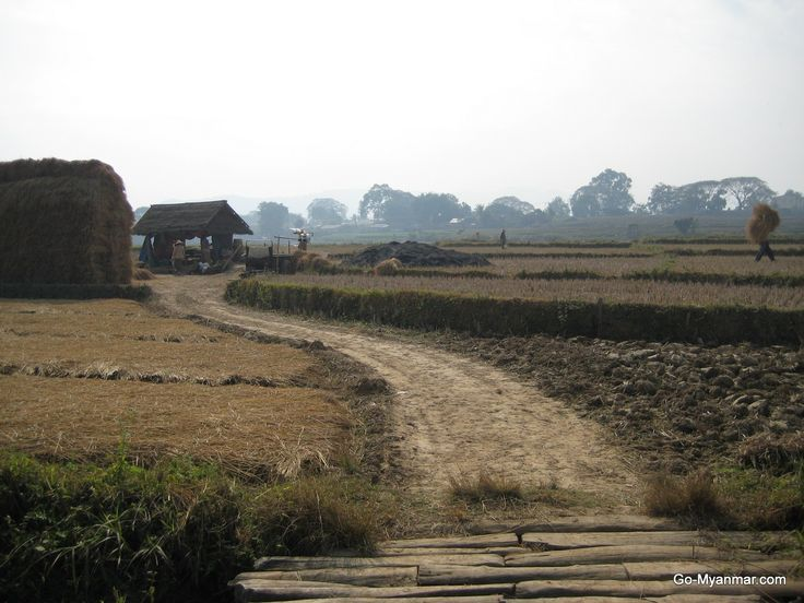 Farmland near Hsipaw, Shan State, Myanmar (Burma). Go here for more information on Hispaw: www.go-myanmar.com/hsipaw-thibaw