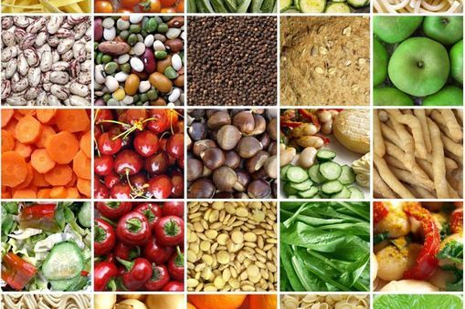 Foods rich in fibre include whole wheat, bran, fresh or dried fruits and vegetables. Fibre is an important ingredient of a healthy diet.