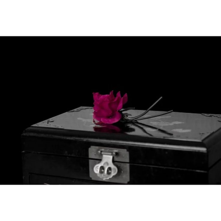 POSTER: Rose und eine geheimnisvolle Truhe