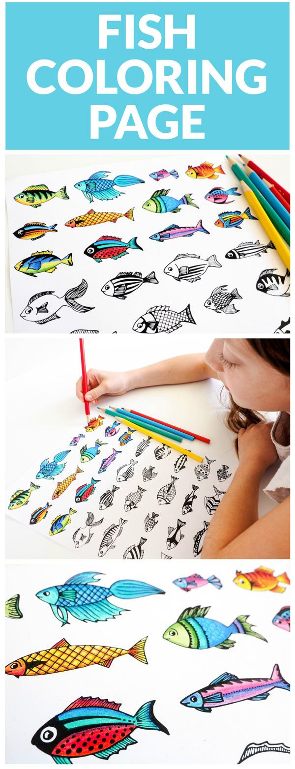 Free printable fish coloring page - a wonderful resource for teachers, homeschoolers and parents. Also a fun and educational way to entertain kids.