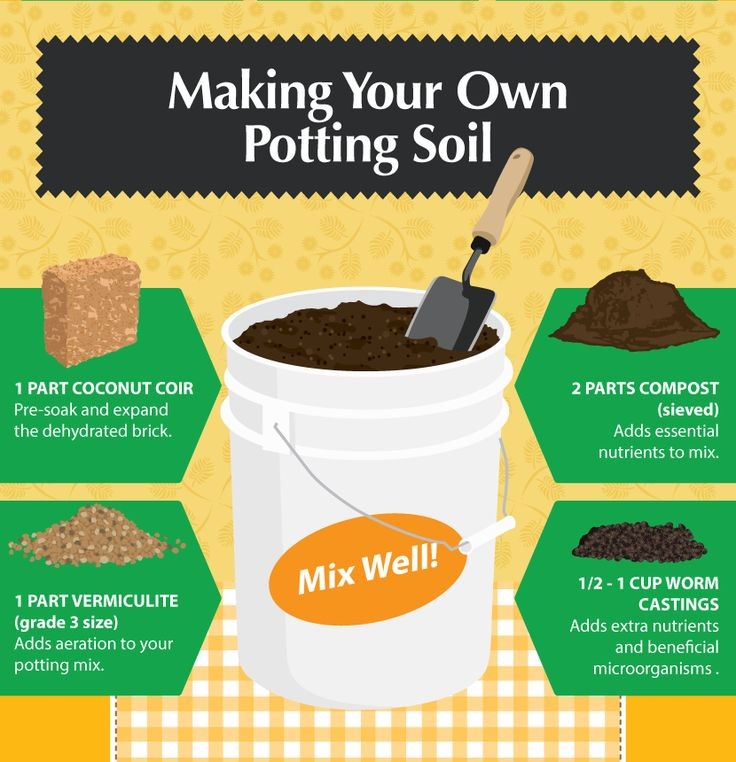 Best 20 potting soil ideas on pinterest container garden container gardening and succulent soil - Soil for container vegetable gardening ...