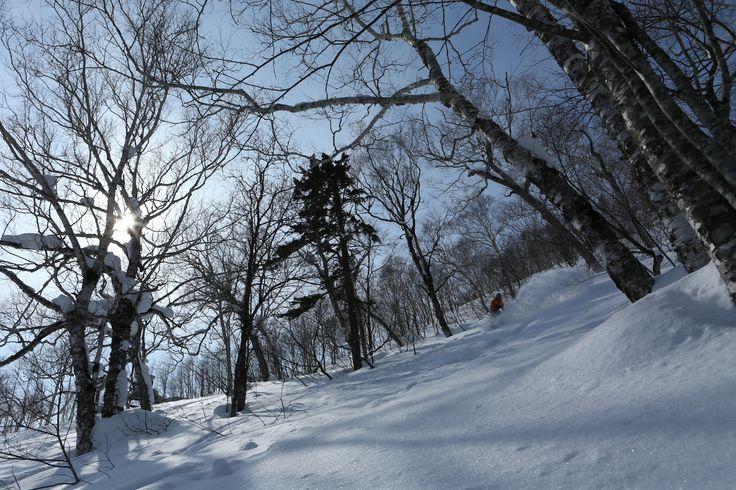 Club Med Hokkaido  クラブメッド 北海道