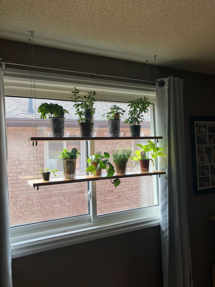 Hanging Shelves My Husband Made For Our Plants And Herbs! Made With Just Wood And Cables!   Bored Panda