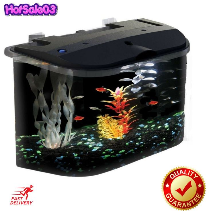 API Panaview Aquarium Kit with LED Lighting and Power Filter 5-Gallon NEW http://ift.tt/2iwVJaT  #API #Panaview #Aquarium #Kit #with #LED #Lighting #and #Power #Filter #5-Gallon #NEW #Pet #Supplies #Fish #& #Aquariums #Aquariums #& #Tanks #Hotsale03